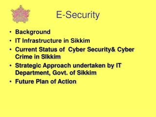 E-Security