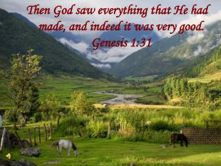 Then God saw everything that He had made, and indeed it was very good. Genesis 1:31