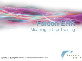 Falcon EHR  Meaningful Use Training