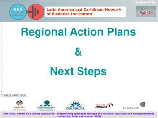 Regional Action Plans  &  Next Steps