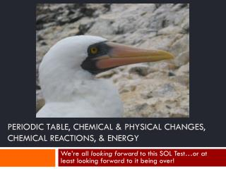 PERIODIC TABLE, CHEMICAL & PHYSICAL CHANGES, CHEMICAL REACTIONS, & ENERGY