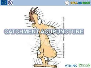 CATCHMENT ACUPUNCTURE