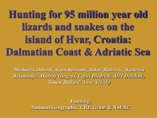 Hunting for 95 million year old lizards and snakes on the island of Hvar, Croatia: