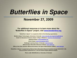 Butterflies in Space November 27, 2009