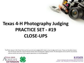 Texas 4-H Photography Judging PRACTICE SET - #19 CLOSE-UPS