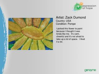 Artist: Zack Dumond  Country: USA  Condition: Pompe