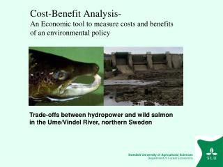 Cost-Benefit Analysis- An Economic tool to measure costs and benefits of an environmental policy