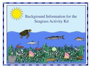 Background Information for the  Seagrass Activity Kit