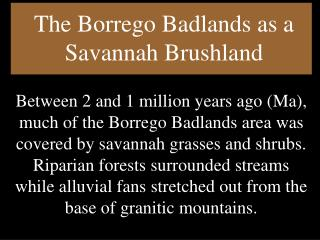 The Borrego Badlands as a Savannah Brushland