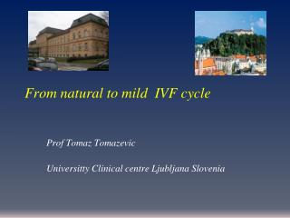 From natural to mild  IVF cycle