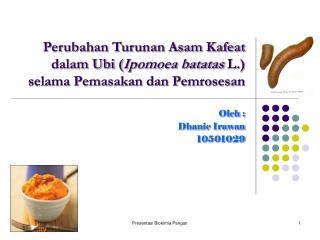 Perubahan Turunan Asam Kafeat dalam Ubi ( Ipomoea batatas  L.) selama Pemasakan dan Pemrosesan