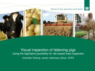 Visual inspection of fattening pigs Using the legislative possibility for risk based meat inspection Charlotte Vilstrup,
