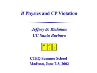 B  Physics and CP Violation