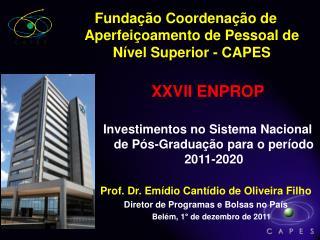 Prof. Dr. Emídio Cantídio de Oliveira Filho Diretor de Programas e Bolsas no País