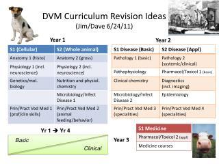 DVM Curriculum Revision Ideas  (Jim/Dave 6/24/11)