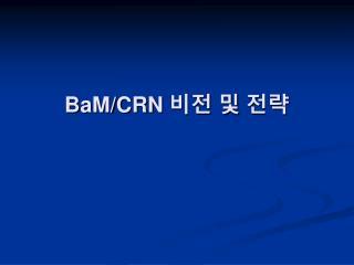 BaM/CRN  비전 및 전략