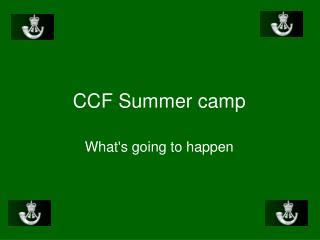 CCF Summer camp