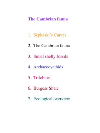 The Cambrian fauna   1.  Sepkoski s Curves  2.  The Cambrian fauna  3.  Small shelly fossils  4.  Archaeocyathids  5.  T