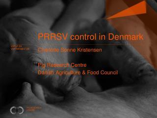 PRRSV control in Denmark