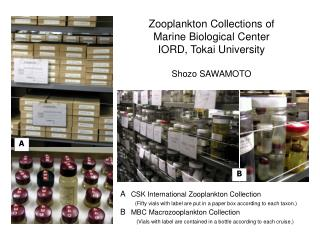 A CSK International Zooplankton Collection