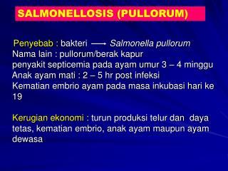 Penyebab :  bakteri          Salmonella pullorum  Nama lain : pullorum/berak kapur