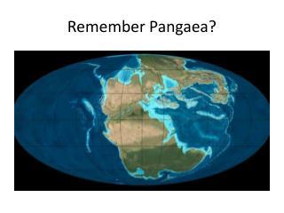 Remember Pangaea?