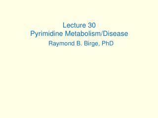 Lecture 30 Pyrimidine Metabolism/Disease