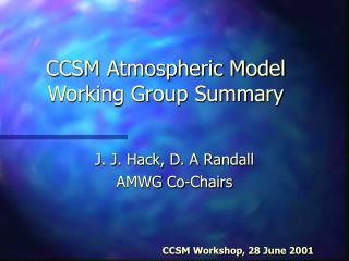 CCSM Atmospheric Model Working Group Summary