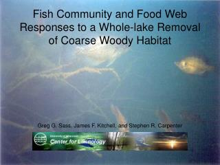 Fish Community and Food Web Responses to a Whole-lake Removal of Coarse Woody Habitat