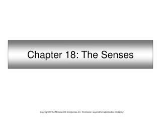 Chapter 18: The Senses