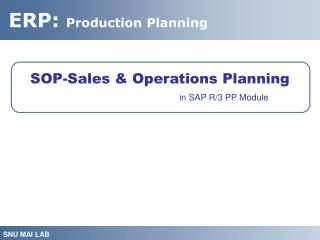 SOP-Sales & Operations Planning in SAP R/3 PP Module