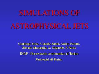 SIMULATIONS OF  ASTROPHYSICAL JETS