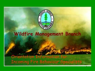 Wildfire Management Branch