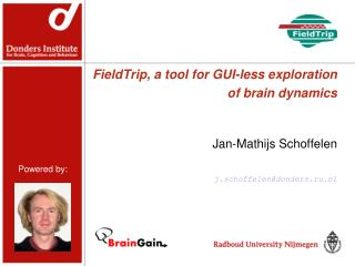 FieldTrip, a tool for GUI-less exploration of brain dynamics