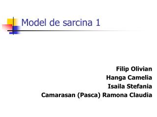 Model de sarcina 1