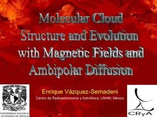 Enrique Vázquez-Semadeni Centro de Radioastronomía y Astrofísica, UNAM, México
