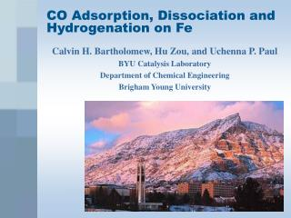 CO Adsorption, Dissociation and  Hydrogenation on Fe