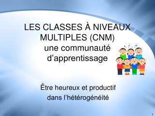 LES CLASSES À NIVEAUX MULTIPLES (CNM) une communauté d'apprentissage