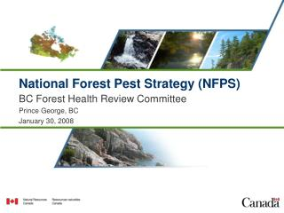 National Forest Pest Strategy (NFPS)