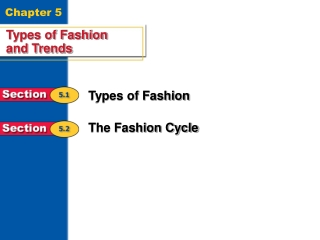 The Fashion Industry