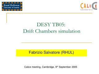 DESY TB05:  Drift Chambers simulation