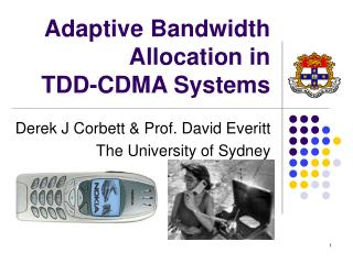 Adaptive Bandwidth Allocation in  TDD-CDMA Systems