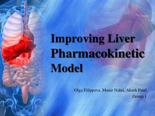 Improving Liver  Pharmacokinetic  Model
