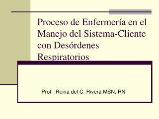 Proceso de Enfermería en el Manejo del Sistema-Cliente con Desórdenes Respiratorios