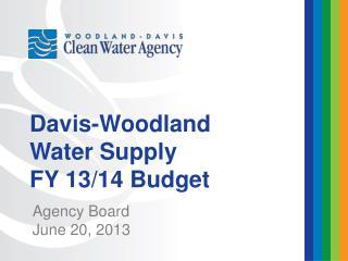 Agency Board June 20, 2013