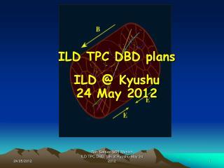 ILD TPC DBD plans  ILD @ Kyushu  24 May 2012