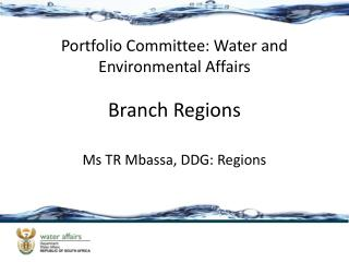 Branch Regions
