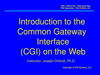 Introduction to the  Common Gateway  Interface (CGI) on the Web