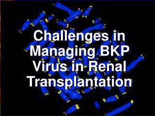 Challenges in Managing  BKP Virus in Renal Transplantation