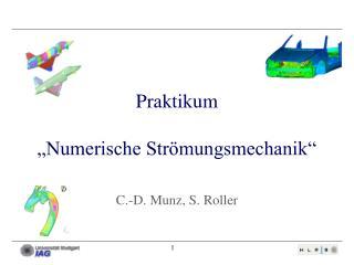 """Praktikum """"Numerische Strömungsmechanik"""" C.-D. Munz, S. Roller"""